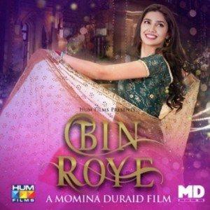 Full Album Bin Roye (2015)